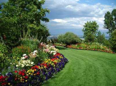 Как может быть оформлена лужайка перед домом?