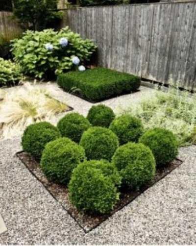 Превращаем маленький дворик в сад